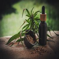 Does CBD Oil Really Helpful for Pain Relief - CBD WAND