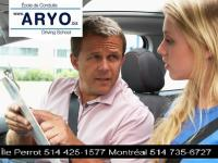 Driving Licence Test Online - Aryo Driving School
