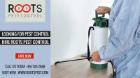 Looking For Pest Control in Toronto | Hire Roots Pest Control