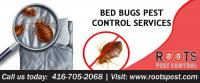 Bed Bug Control & Treatment | Exterminators For Bed Bugs