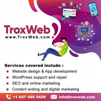 WEB DESIGN & APPLICATION DESIGN