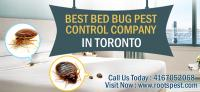 Bed Bugs Control Company| Roots Pest Control