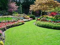 Hiring for Gardening Maintenance