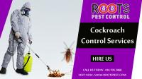 Specialized Cockroaches Control | Roots Pest Control