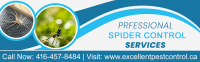 Professional Spider control By Excellent Pest Control | Excellent Pest Control