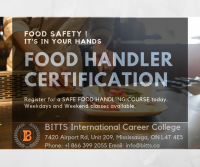 Food Service Worker Diploma Course