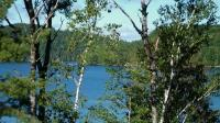 Land for sale + a deeded Right of Access to Lake Pemichangan On Land for Sale in Canada