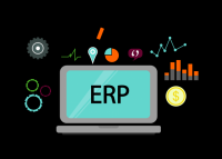 ERP Software Development Services and Company