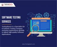 What are the various types of software testing?
