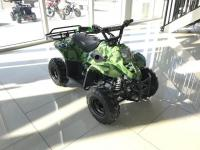 FREE SHIPPING KIDS 110CC ATV 4 STROKE FULLY AUTOMATIC QUAD VTT WITH REMOTE KILL SWITCH + SPEED GOVERNOR 4-WHEELER onfree online classified ads in canada