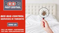 Bed Bug Control Services In Toronto