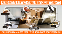 Roots Pest Control: Residential Pest Control in Toronto